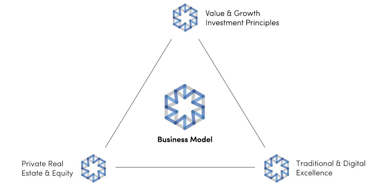 VG Ventures Business Model